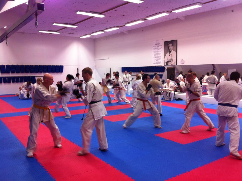 Gradering vuxna - kumite